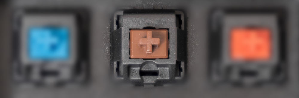 brown switches